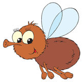 Fly (vector clip-art) Stock Photography
