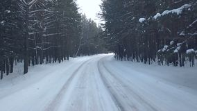 Fly through the woods and turn. Windy and snowly stock video footage