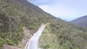 Flycam摄制运行在林业高地的长的柏油路 影视素材