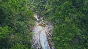 Flycam двигает вдоль ущелья с бурным потоком среди ландшафта