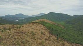 Flycam Moves above Felled Terrain against Landscape Sky stock video