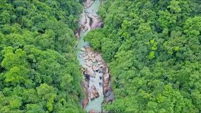 Flycam moves above tropical jungle with mountain river. Flycam moves above thick tropical jungle with narrow mountain rocky river in Vietnamese national park stock video footage