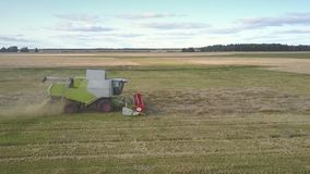 Flycam moves close to combine gathering wheat leaving straw stock footage