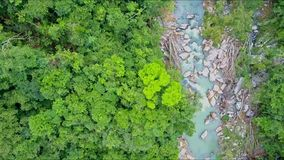 Flycam moves close to river among thick tropical jungle stock video footage