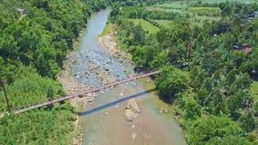Flycam Moves over Long Bridge among Plants against Sky stock video