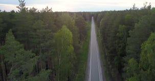 Flycam segue a condução de carro ao longo da estrada na floresta conífera video estoque