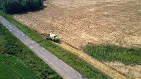 Flycam sube sobre el funcionamiento de la máquina segador en campo de trigo del oro almacen de metraje de vídeo