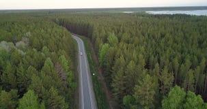 Flycam va giù alla strada vicino all'automobile fra la foresta sempreverde video d archivio