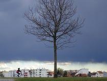 flyende storm arkivbilder