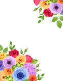 Flyer background with colorful flowers. Vector illustration. Royalty Free Stock Image
