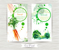 Flyer with carrot and broccoli. Watercolor illustration. vector illustration