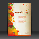 Flyer Design. Colorful Flyer Design with bubbles Stock Photography