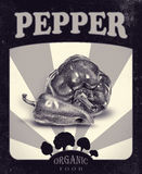 Flyer with peppers drawn by hand with pencil. Retro design. Drawing with crayons. Fresh tasty vegetables painted from nature. Tinted black and white Royalty Free Stock Image