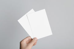 A6 Flyer / Postcard / Invitation Mock-Up. Male hands holding blank flyers on a gray background Royalty Free Stock Photography
