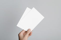 A6 Flyer / Postcard / Invitation Mock-Up. Male hands holding blank flyers on a gray background Royalty Free Stock Photo