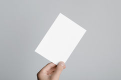 A6 Flyer / Postcard / Invitation Mock-Up. Male hands holding blank flyers on a gray background Stock Image