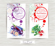 Flyer with radish and eggplant. Watercolor illustration. Royalty Free Stock Image