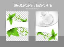 Flyer template design vector illustration