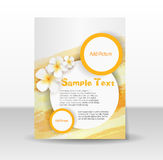 Flyer template with frangipani flowers Stock Photos