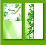 Flyer template with a fresh spring background. Design templates with spring flowers for business Business cards and flyer with floral ornaments for design stock illustration