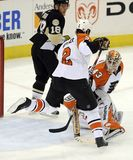 Flyers Penguins Stock Photography