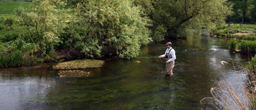 Flyfisher Stock Photos