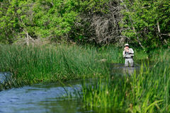 Flyfisher angling on the river Royalty Free Stock Photo