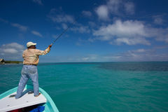 A flyfisherman looking for bonefish in Belize Stock Images