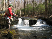 Flyfishing For Brook Trout Stock Photography