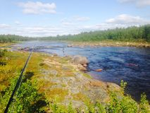 Flyfishing in Lapland. River in Inari Finland Royalty Free Stock Photos