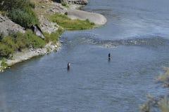 Flyfishing le MOIS puissant Photographie stock libre de droits