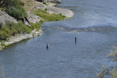 Flyfishing Możnego Mo Fotografia Royalty Free