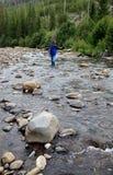Flyfishing in Yellowstone Lizenzfreie Stockfotos