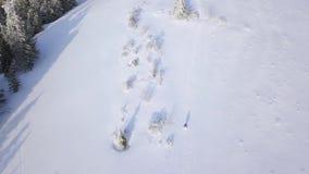 Flyg över den ensamma turist- flickan som promenerar överkanten av ett berg som täckas med snö Klart frostigt väder arkivfilmer