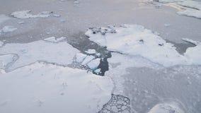Flyg- flyg över det polara havet, grund _ arkivfilmer