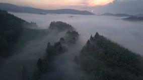 Flyg över dimmig skog i morgonsoluppgång arkivfilmer