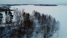 Flyg över filds i vinter lager videofilmer