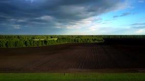Flyg över grönt fält ovanför plogad fält och skog lager videofilmer