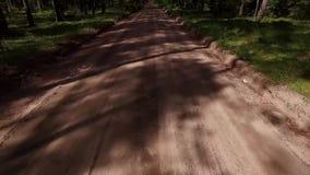 Flyg över grusvägen i skog stock video