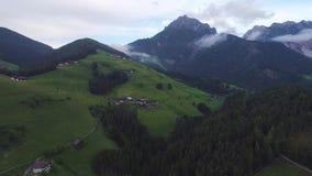 Flyg över skog i berg arkivfilmer