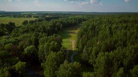 Flyg över skogen och rekreationsområdena arkivfilmer