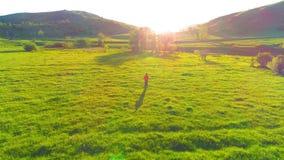 Flyg över sportman på den perfekta ängen för grönt gräs Solnedgång i berg stock video