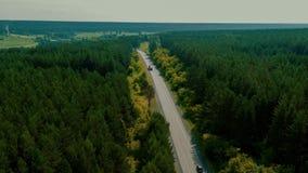 Flyg över vägen i skogen lager videofilmer