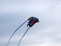 Flyg av en drake Fotografering för Bildbyråer
