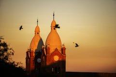 Flyg av fåglar i domkyrkan royaltyfri fotografi