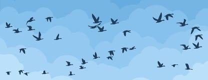 Flyg av fåglar i himlen royaltyfri illustrationer