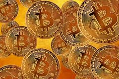 Flyg Bitcoin som mest viktigt cryptocurrencybegrepp Crypto valuta guld- Bitcoin, BTC, bitmynt Närbild Blockchain Royaltyfri Bild