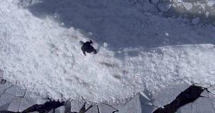 Flyg- dronsikt av den unga aktiva lyckliga mannen som går på isglaciärerna nära kustlinjen av vinterhavet surrsikt arkivfilmer