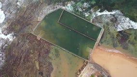 Flyg- fåglar synar surret sköt av ett hav vaggar pölen nära Sydney, Australien stock video