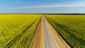 Flyg- för asfaltvägen mellan gula fält på bakgrund för blå himmel skjutit Bedöva bygdlandskap med a lager videofilmer